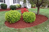 Fall Clean Up Carlos Martin Landscape Design